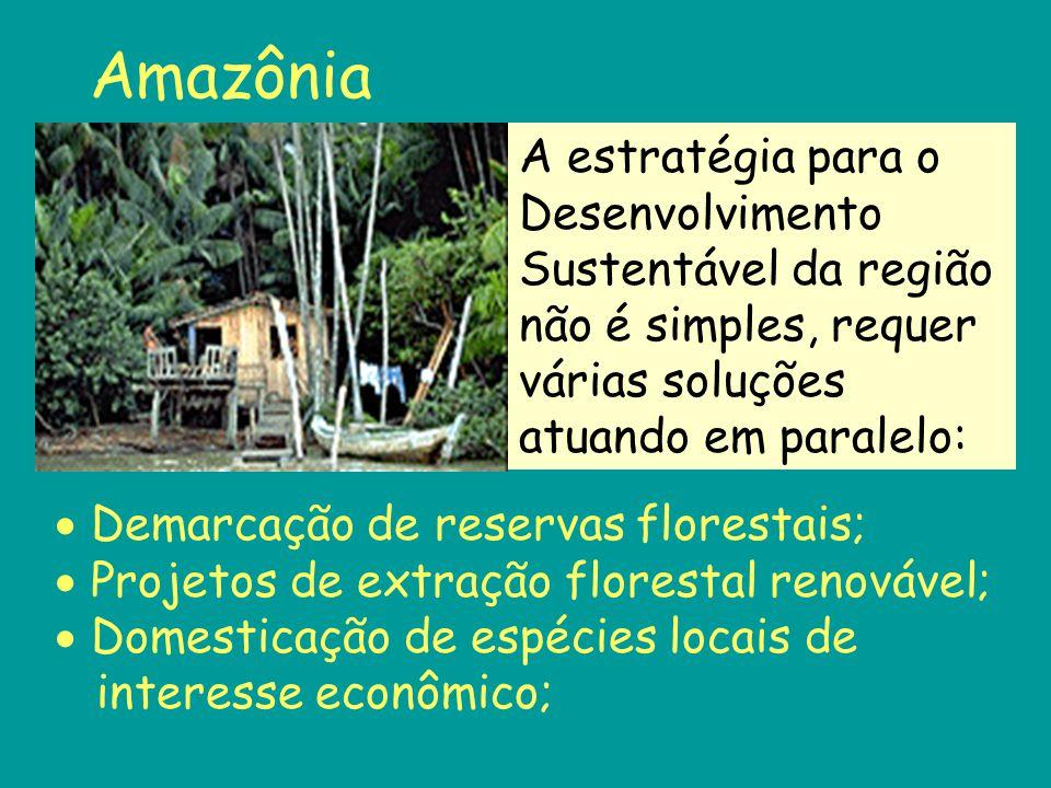 Amazônia  Demarcação de reservas florestais;  Projetos de extração florestal renovável;  Domesticação de espécies locais de interesse econômico; A