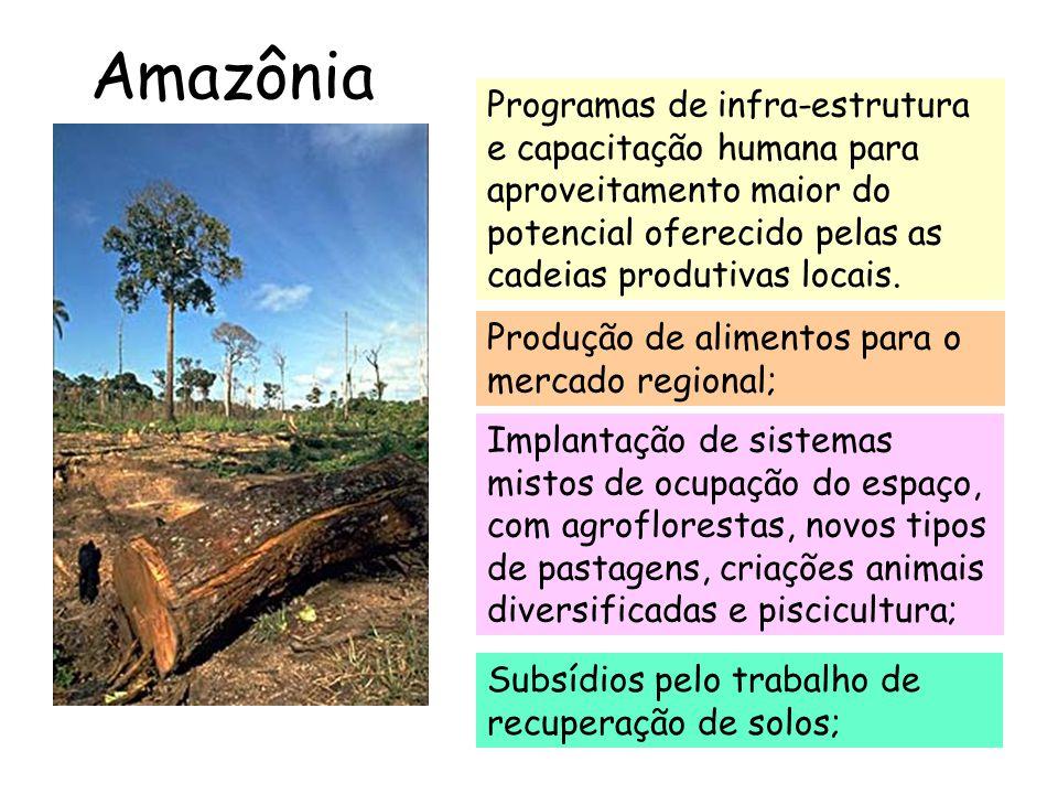 Amazônia Exemplos: seringueira, guaraná, cacau, mogno, pupunha, cupuaçú, pimenta longa, jaborandí, açaí, plantas medicinais, plantas aromáticas, fruteiras nativas, castanha do Pará, pau-rosa, cumarú, uvilla, etc.