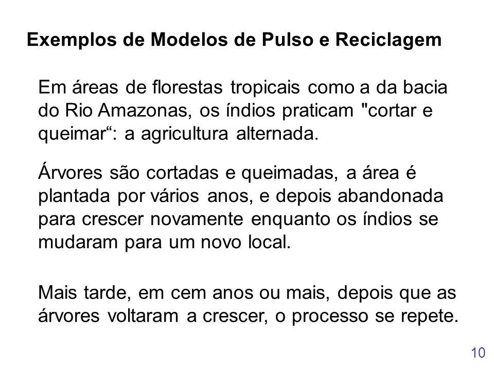 10 Exemplos de Modelos de Pulso e Reciclagem Em áreas de florestas tropicais como a da bacia do Rio Amazonas, os índios praticam
