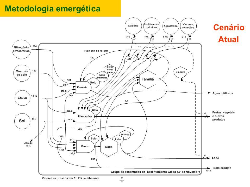 Metodologia emergética Cenário Atual