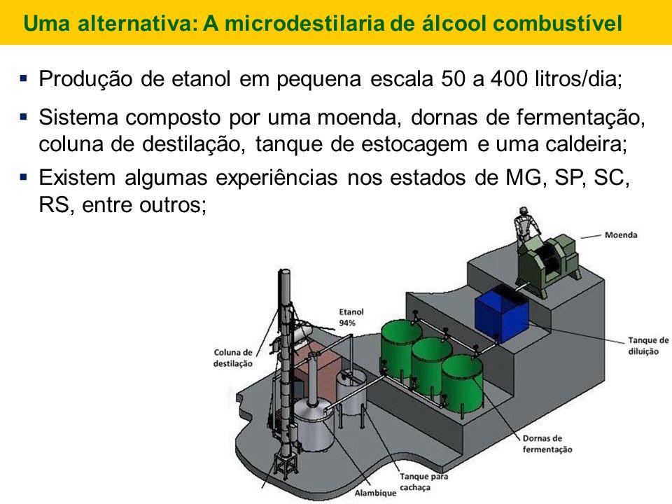  Produção de etanol em pequena escala 50 a 400 litros/dia;  Sistema composto por uma moenda, dornas de fermentação, coluna de destilação, tanque de