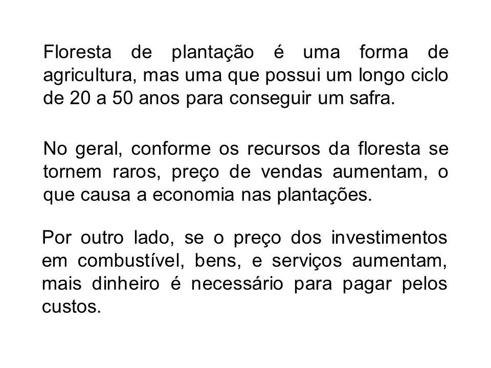 Floresta de plantação é uma forma de agricultura, mas uma que possui um longo ciclo de 20 a 50 anos para conseguir um safra.
