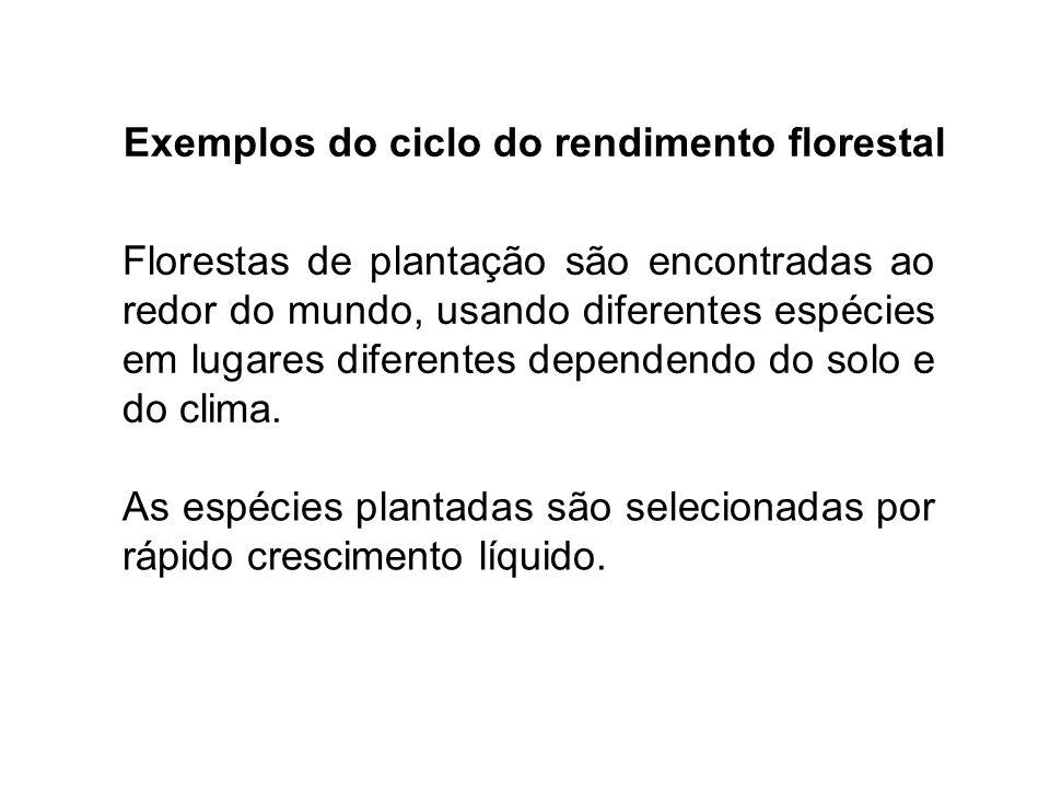 Exemplos do ciclo do rendimento florestal Florestas de plantação são encontradas ao redor do mundo, usando diferentes espécies em lugares diferentes dependendo do solo e do clima.