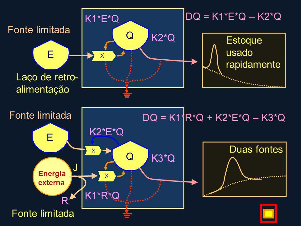 Q Estoque usado rapidamente K2*Q X Fonte limitada E R Q Duas fontes K3*Q X Energia externa K1*R*Q J E X K1*E*Q K2*E*Q Fonte limitada Laço de retro- alimentação DQ = K1*E*Q – K2*Q DQ = K1*R*Q + K2*E*Q – K3*Q