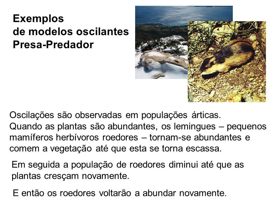 Exemplos de modelos oscilantes Presa-Predador Em seguida a população de roedores diminui até que as plantas cresçam novamente. Oscilações são observad