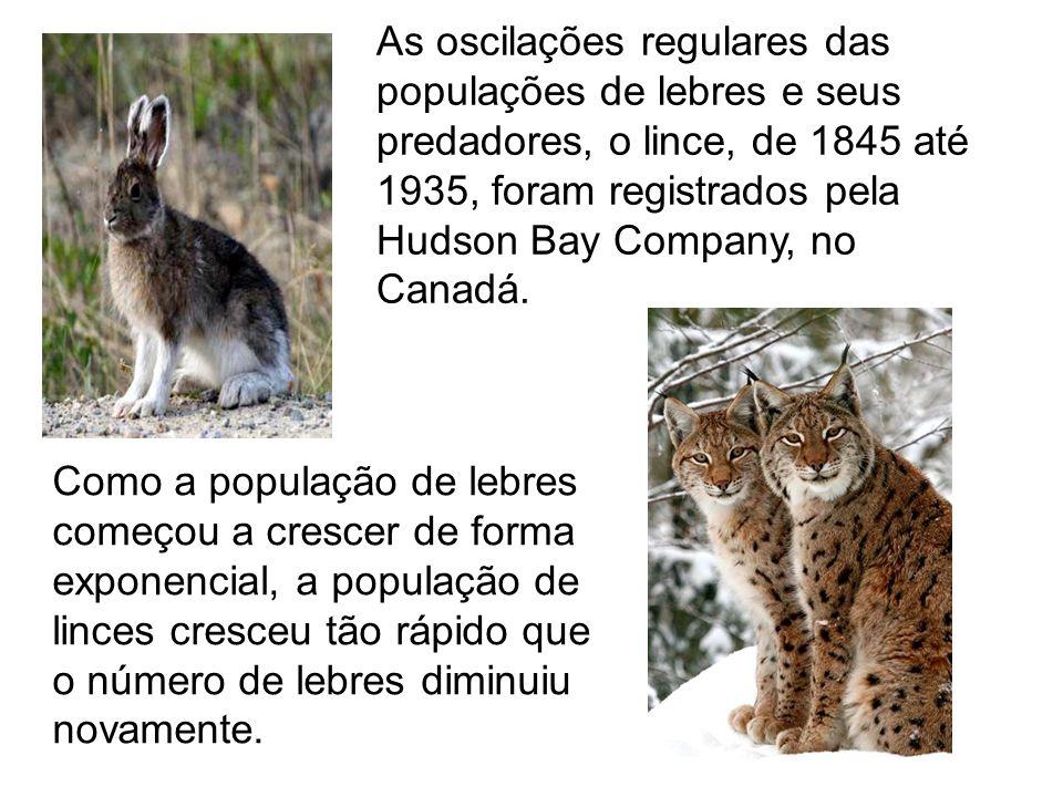 As oscilações regulares das populações de lebres e seus predadores, o lince, de 1845 até 1935, foram registrados pela Hudson Bay Company, no Canadá. C