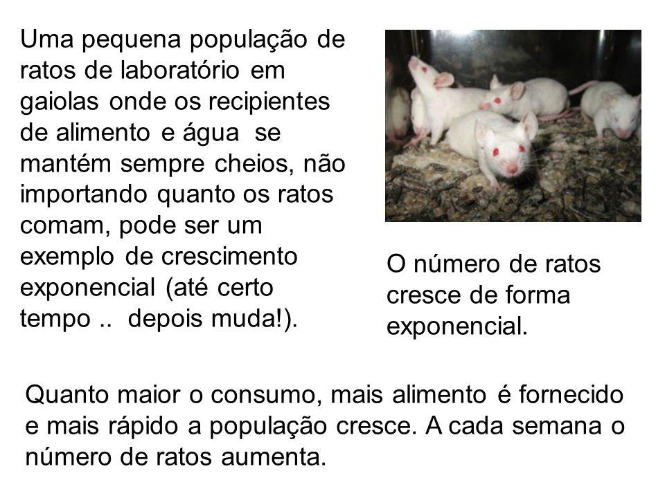 Faremos algumas mudanças nas condições de vida da população de ratos de laboratório.