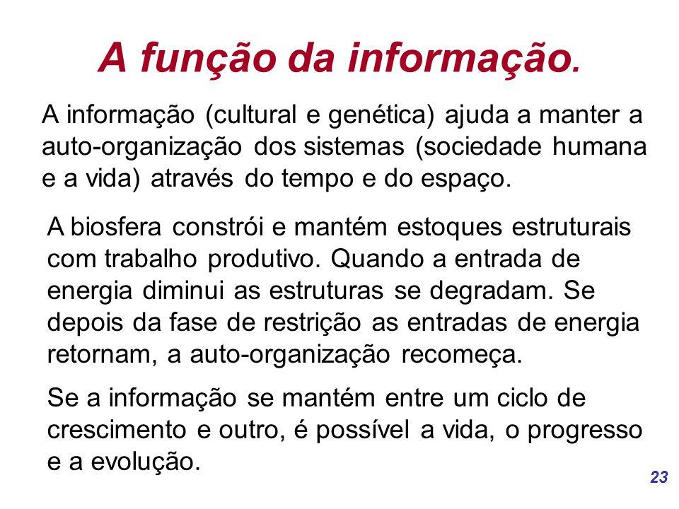 23 A função da informação.