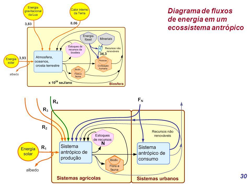 30 Diagrama de fluxos de energia em um ecossistema antrópico