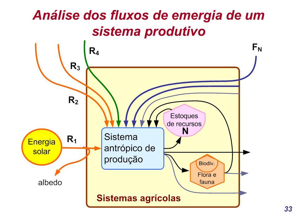 33 Análise dos fluxos de emergia de um sistema produtivo