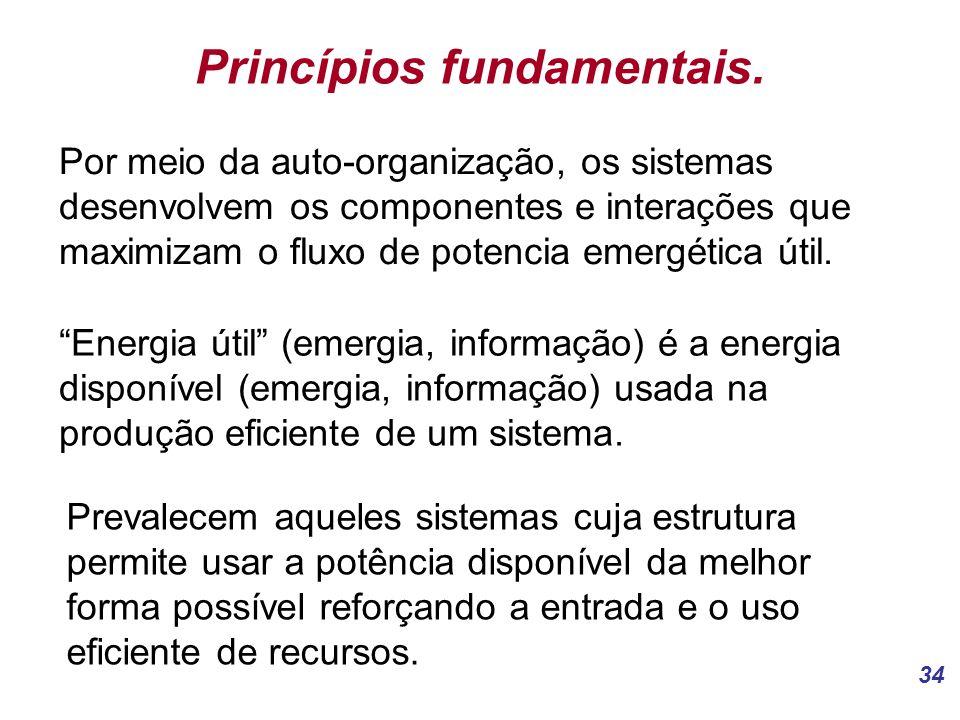 34 Princípios fundamentais.