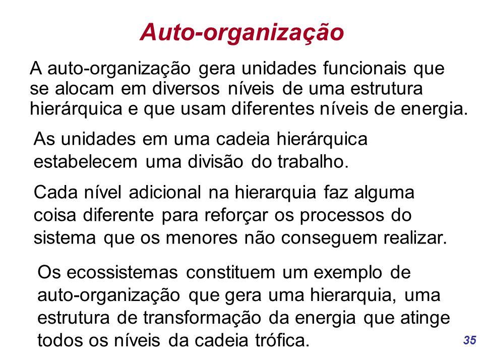35 Auto-organização A auto-organização gera unidades funcionais que se alocam em diversos níveis de uma estrutura hierárquica e que usam diferentes níveis de energia.