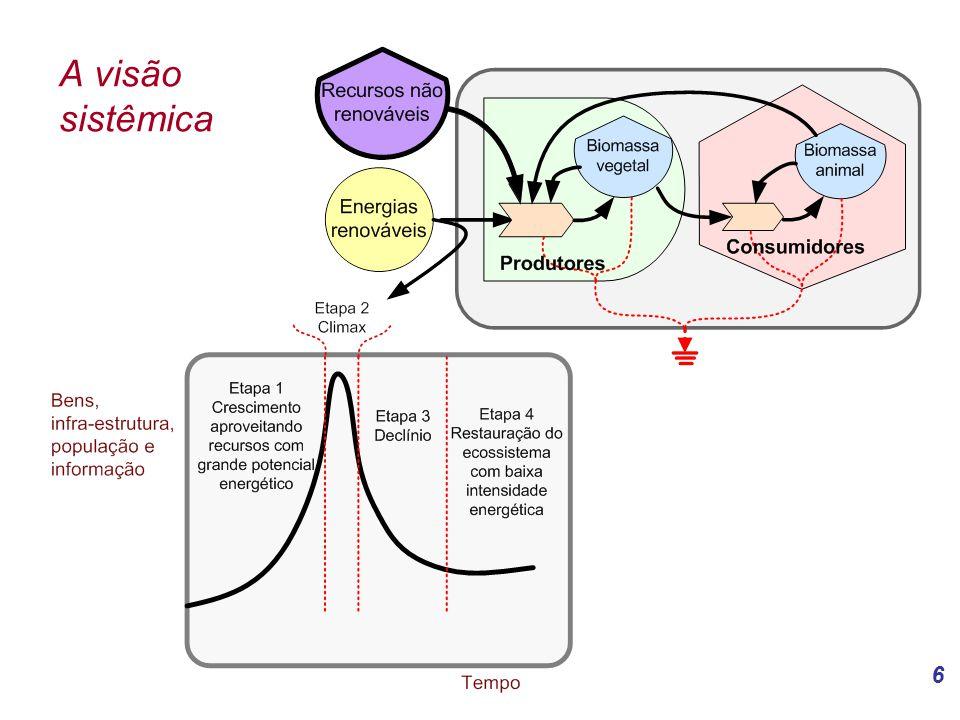6 A visão sistêmica