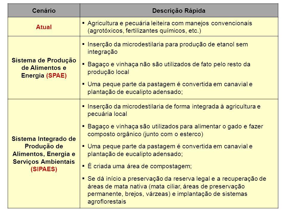 CenárioDescrição Rápida Atual  Agricultura e pecuária leiteira com manejos convencionais (agrotóxicos, fertilizantes químicos, etc.) Sistema de Produ