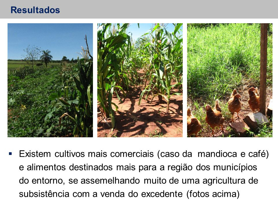 Resultados  Existem cultivos mais comerciais (caso da mandioca e café) e alimentos destinados mais para a região dos municípios do entorno, se asseme