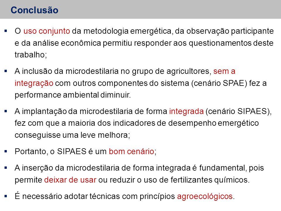 Conclusão  O uso conjunto da metodologia emergética, da observação participante e da análise econômica permitiu responder aos questionamentos deste t