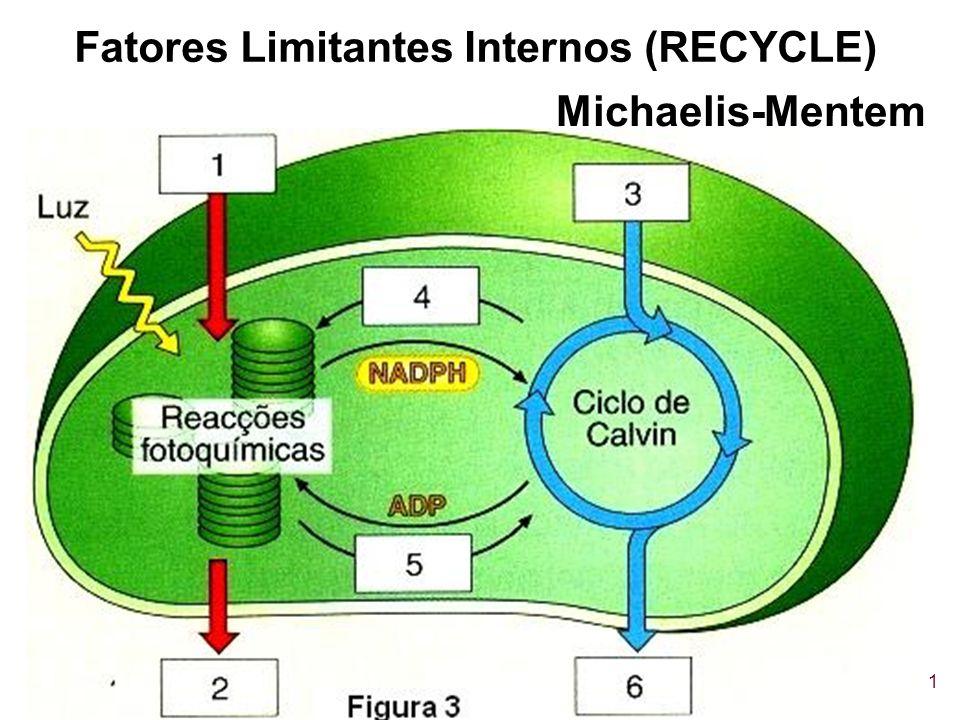 1 Fatores Limitantes Internos (RECYCLE) Michaelis-Mentem