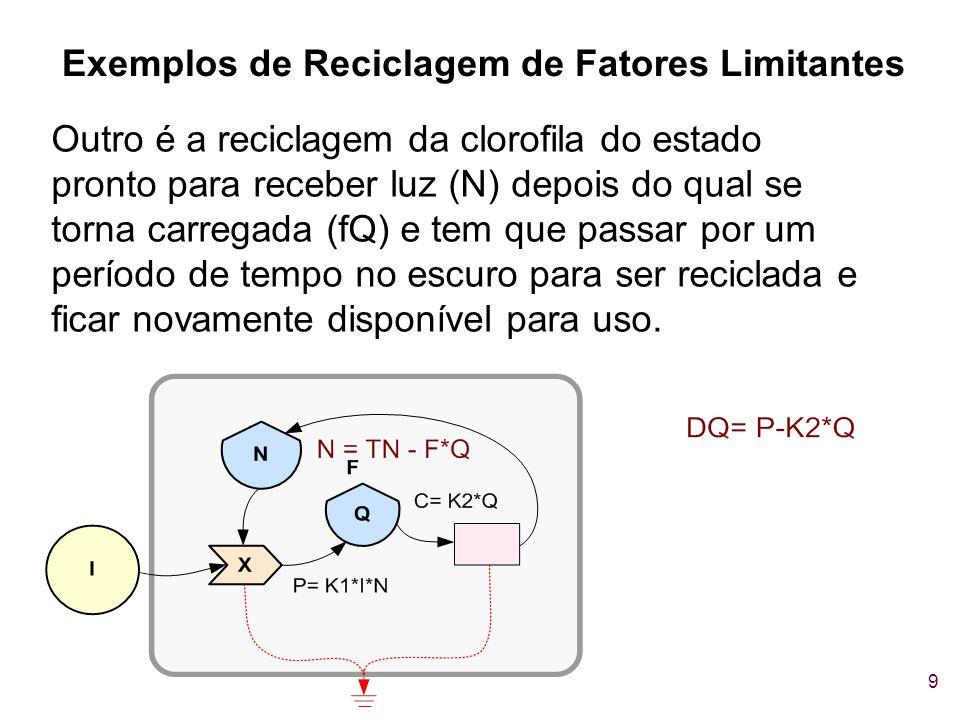 9 Outro é a reciclagem da clorofila do estado pronto para receber luz (N) depois do qual se torna carregada (fQ) e tem que passar por um período de te