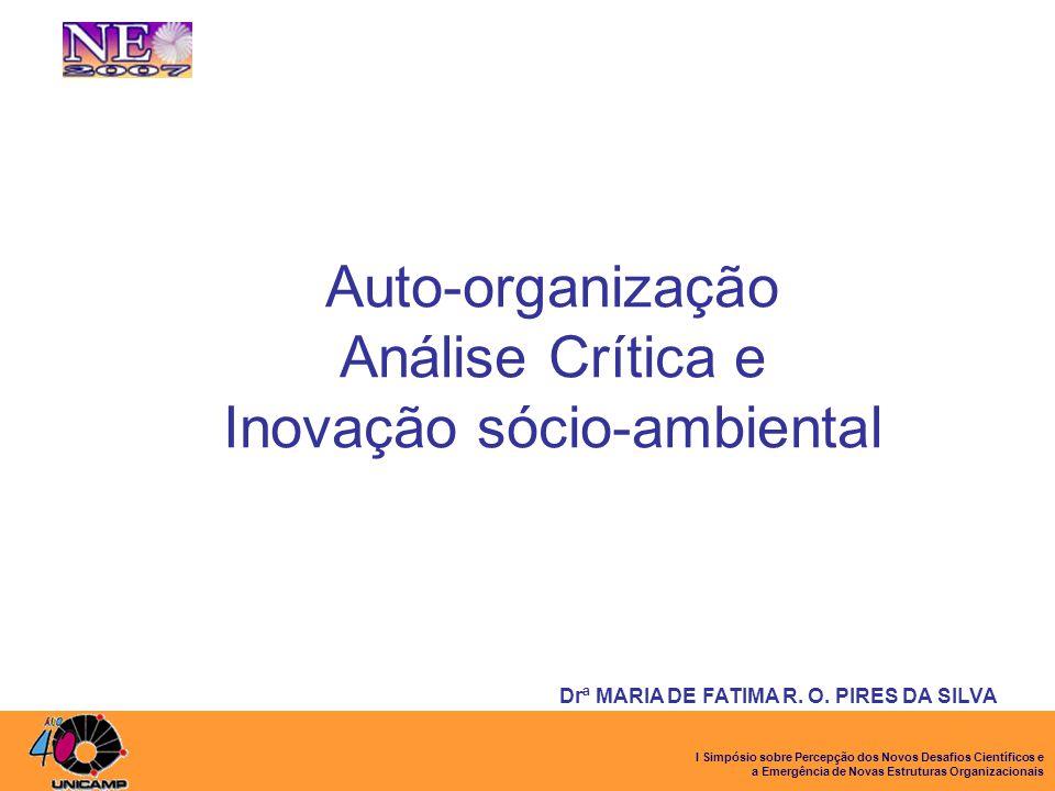 I Simpósio sobre Percepção dos Novos Desafios Científicos e a Emergência de Novas Estruturas Organizacionais Auto-organização Análise Crítica e Inovaç