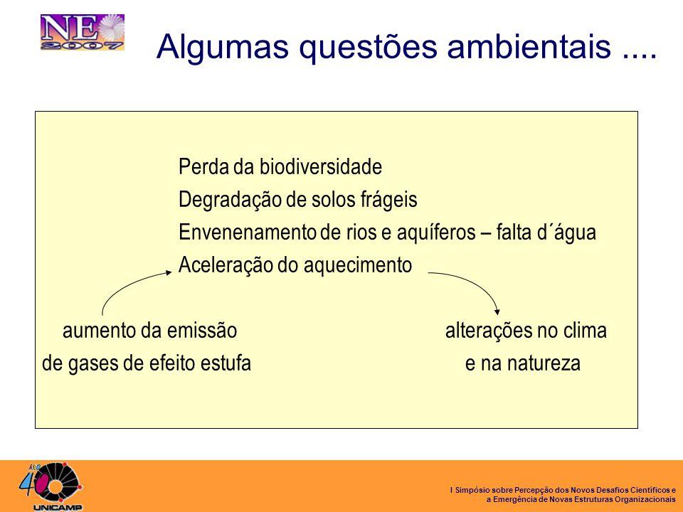 I Simpósio sobre Percepção dos Novos Desafios Científicos e a Emergência de Novas Estruturas Organizacionais Algumas questões ambientais.... Perda da