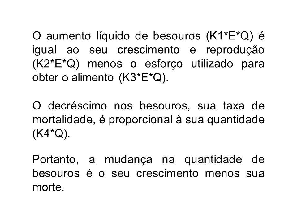 O aumento líquido de besouros (K1*E*Q) é igual ao seu crescimento e reprodução (K2*E*Q) menos o esforço utilizado para obter o alimento (K3*E*Q).