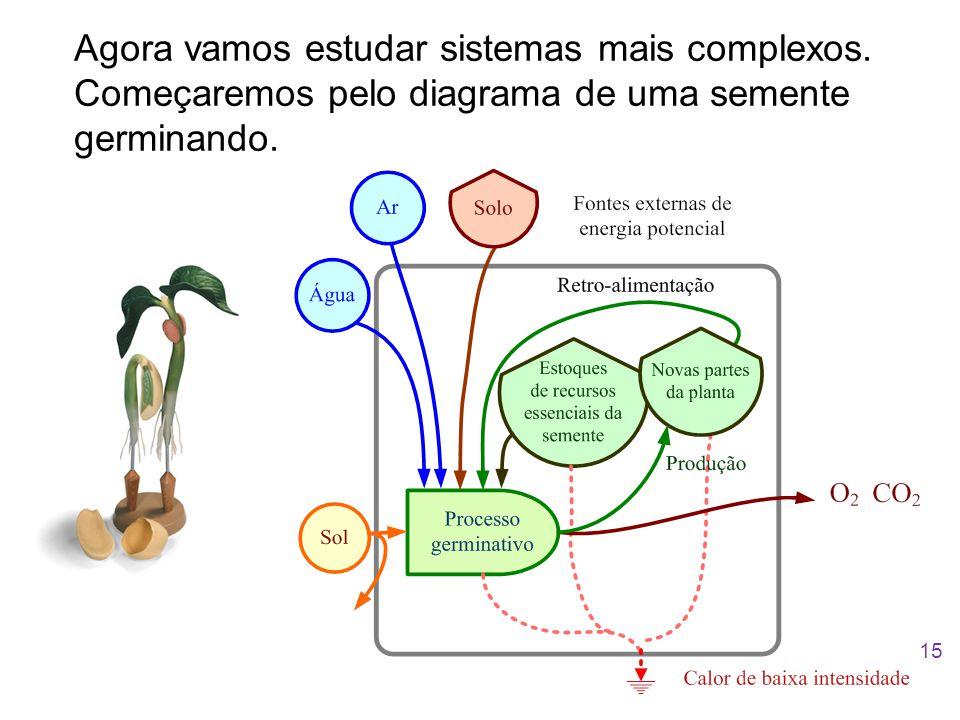 Agora vamos estudar sistemas mais complexos. Começaremos pelo diagrama de uma semente germinando. 15