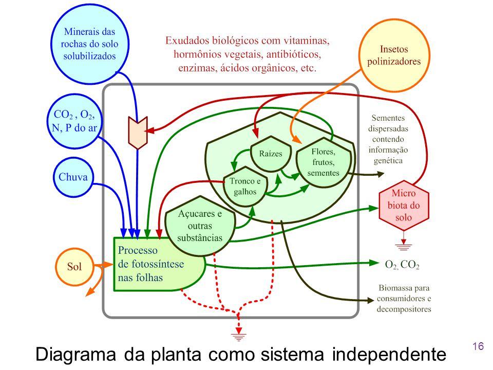 Diagrama da planta como sistema independente 16
