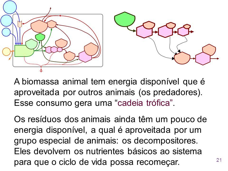 """A biomassa animal tem energia disponível que é aproveitada por outros animais (os predadores). Esse consumo gera uma """"cadeia trófica"""". Os resíduos dos"""