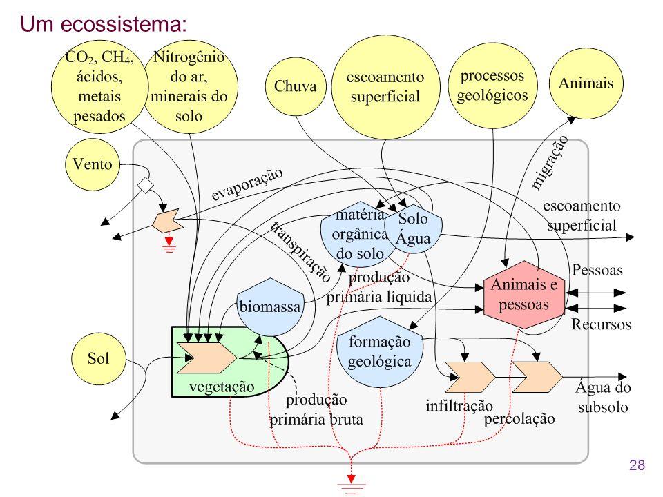 Um ecossistema: 28