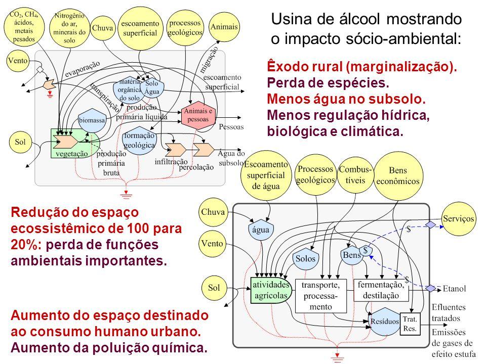 Usina de álcool mostrando o impacto sócio-ambiental: Redução do espaço ecossistêmico de 100 para 20%: perda de funções ambientais importantes. Aumento