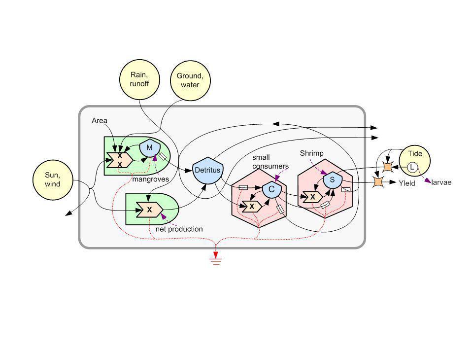O mini-modelo ilustra os padrões da cadeia alimentar em ecossistemas e na reciclagem de nutrientes minerais.