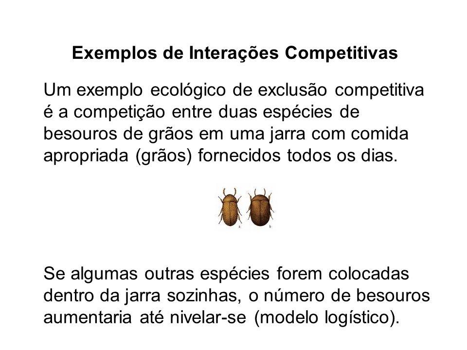 Exemplos de Interações Competitivas Um exemplo ecológico de exclusão competitiva é a competição entre duas espécies de besouros de grãos em uma jarra com comida apropriada (grãos) fornecidos todos os dias.