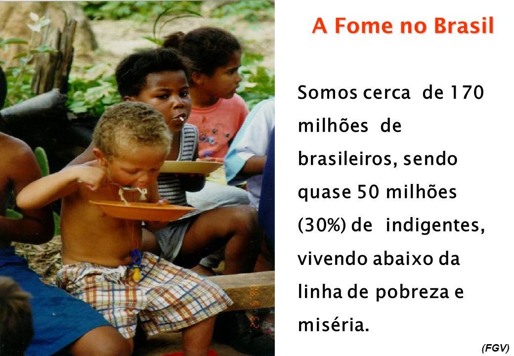 A Fome no Brasil Somos cerca de 170 milhões de brasileiros, sendo quase 50 milhões (30%) de indigentes, vivendo abaixo da linha de pobreza e miséria.
