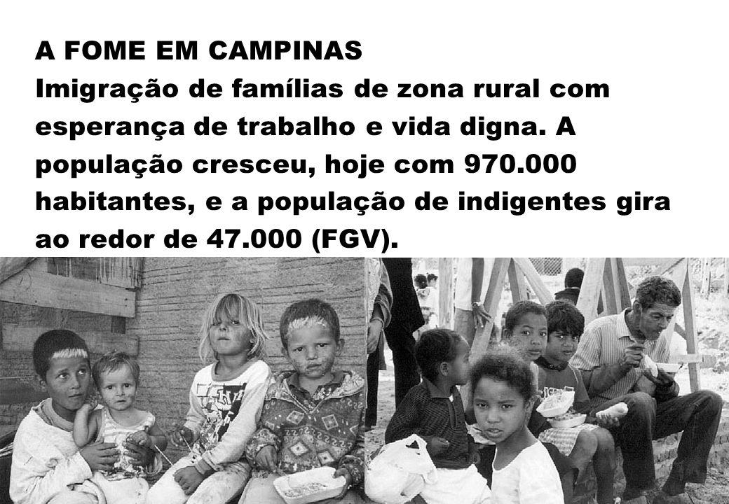 A FOME EM CAMPINAS Imigração de famílias de zona rural com esperança de trabalho e vida digna. A população cresceu, hoje com 970.000 habitantes, e a p