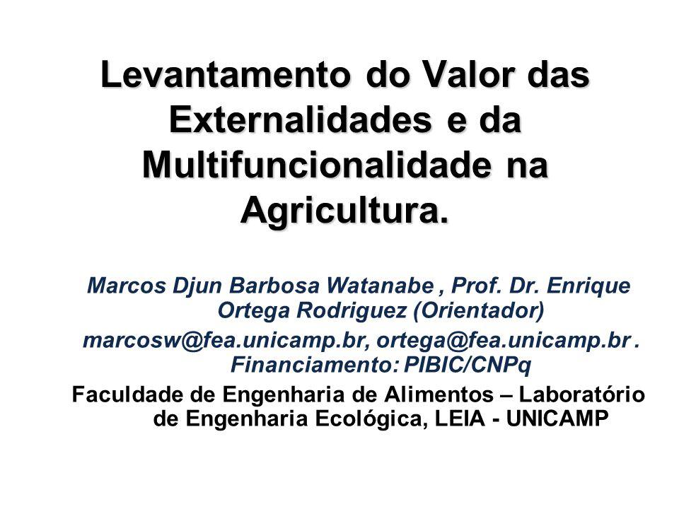 Marcos Djun Barbosa Watanabe, Prof. Dr. Enrique Ortega Rodriguez (Orientador) marcosw@fea.unicamp.br, ortega@fea.unicamp.br. Financiamento: PIBIC/CNPq