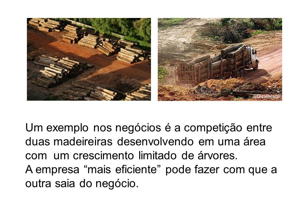 """Um exemplo nos negócios é a competição entre duas madeireiras desenvolvendo em uma área com um crescimento limitado de árvores. A empresa """"mais eficie"""