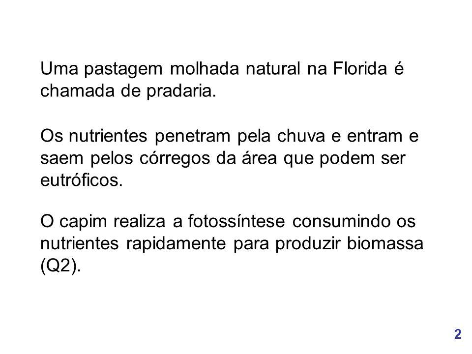 2 Uma pastagem molhada natural na Florida é chamada de pradaria. O capim realiza a fotossíntese consumindo os nutrientes rapidamente para produzir bio