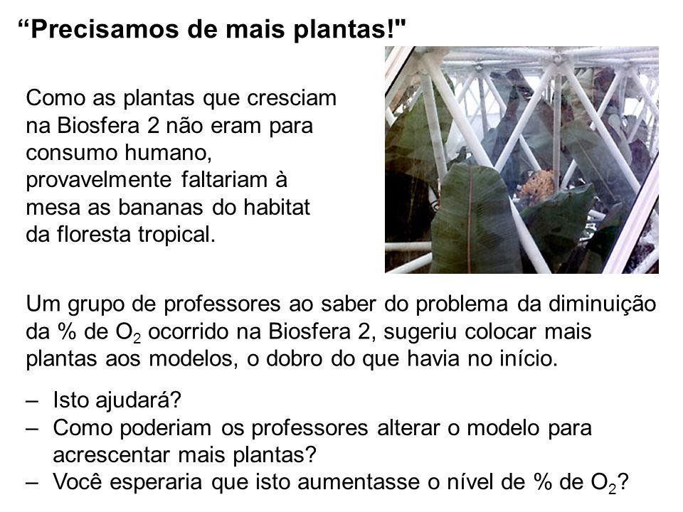 Precisamos de mais plantas! Como as plantas que cresciam na Biosfera 2 não eram para consumo humano, provavelmente faltariam à mesa as bananas do habitat da floresta tropical.