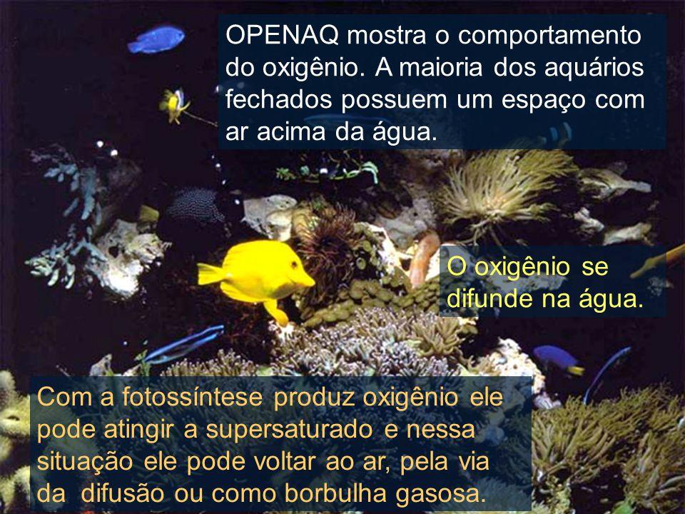 OPENAQ mostra o comportamento do oxigênio.