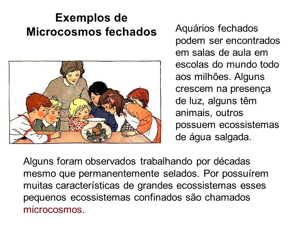 Exemplos de Microcosmos fechados Aquários fechados podem ser encontrados em salas de aula em escolas do mundo todo aos milhões.