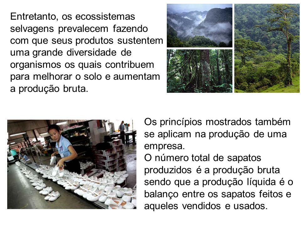 Os princípios mostrados também se aplicam na produção de uma empresa. O número total de sapatos produzidos é a produção bruta sendo que a produção líq