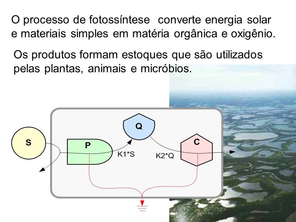 O processo de fotossíntese converte energia solar e materiais simples em matéria orgânica e oxigênio. Os produtos formam estoques que são utilizados p