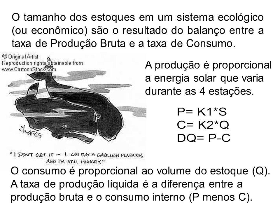 O tamanho dos estoques em um sistema ecológico (ou econômico) são o resultado do balanço entre a taxa de Produção Bruta e a taxa de Consumo. A produçã