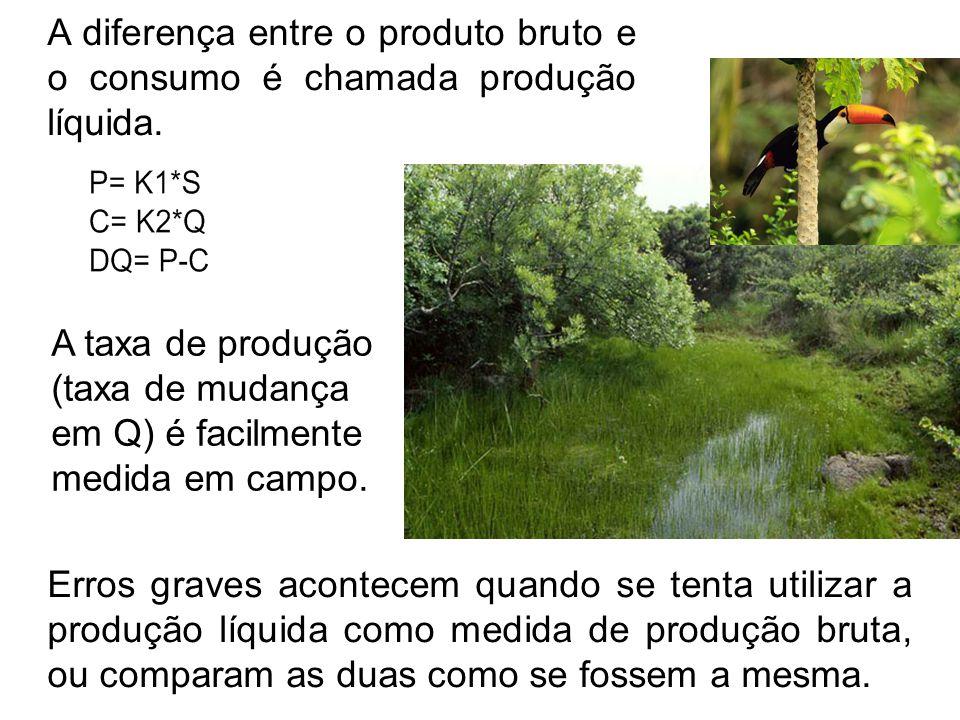 A diferença entre o produto bruto e o consumo é chamada produção líquida. Erros graves acontecem quando se tenta utilizar a produção líquida como medi