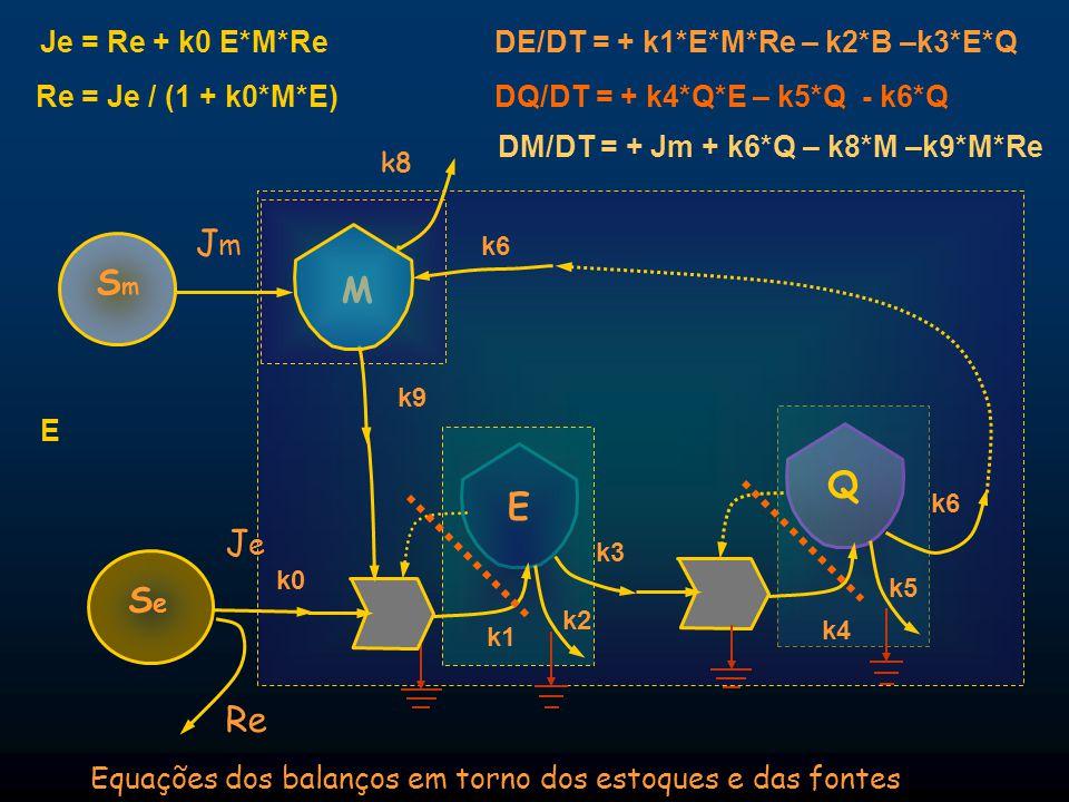 JeJe Equações dos balanços em torno dos estoques e das fontes Q E SeSe DQ/DT = + k4*Q*E – k5*Q - k6*Q k8 k6 k0 M SmSm JmJm Re Re = Je / (1 + k0*M*E) J