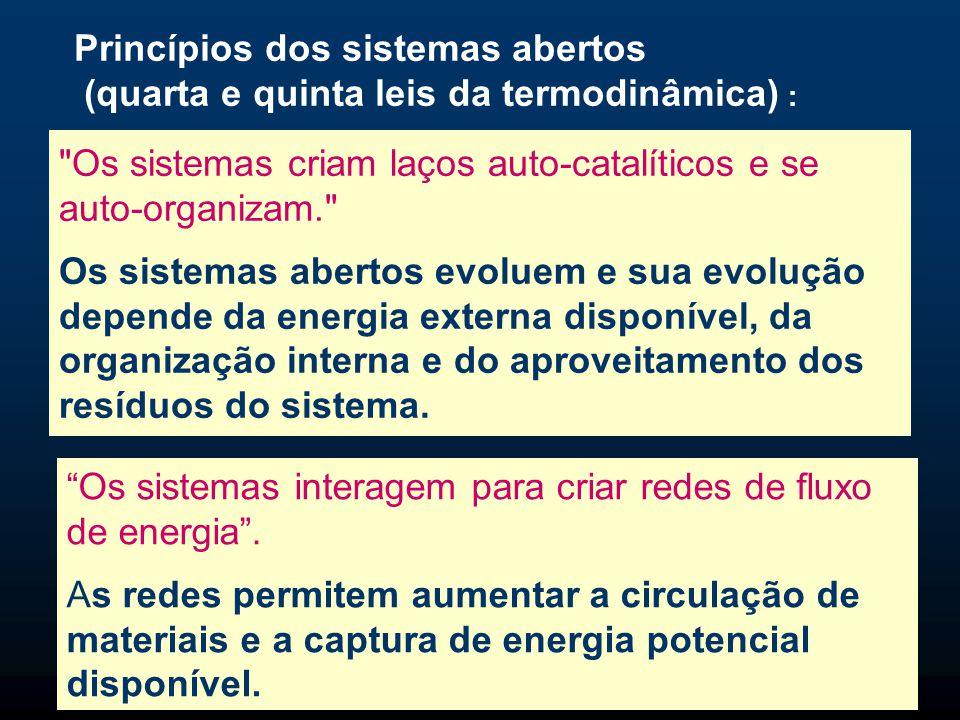 Princípios dos sistemas abertos  Os sistemas pulsam, eles se desenvolvem em ciclos de produção, consumo, reciclagem.