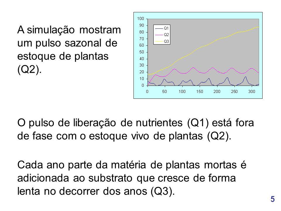 5 A simulação mostram um pulso sazonal de estoque de plantas (Q2).