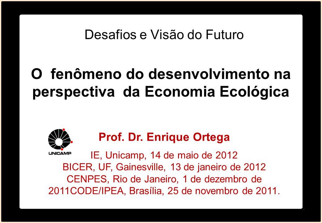 Desafios e Visão do Futuro Prof. Dr. Enrique Ortega IE, Unicamp, 14 de maio de 2012 BICER, UF, Gainesville, 13 de janeiro de 2012 CENPES, Rio de Janei
