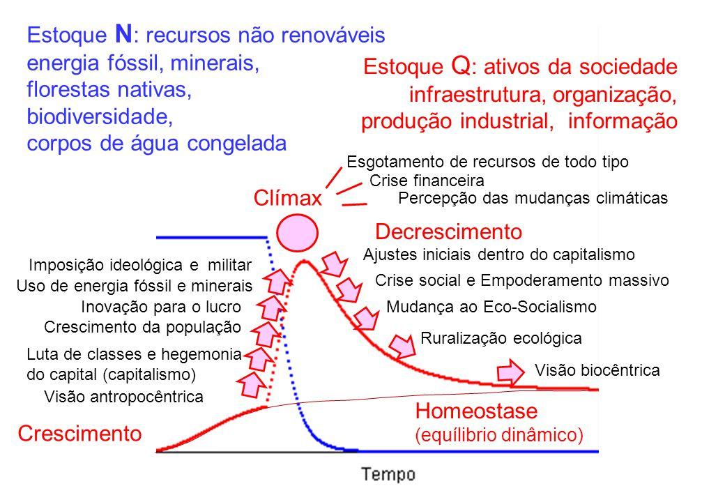 Estoque N : recursos não renováveis energia fóssil, minerais, florestas nativas, biodiversidade, corpos de água congelada Estoque Q : ativos da socied