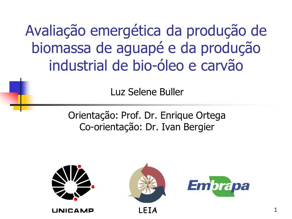 1 Avaliação emergética da produção de biomassa de aguapé e da produção industrial de bio-óleo e carvão Luz Selene Buller Orientação: Prof. Dr. Enrique